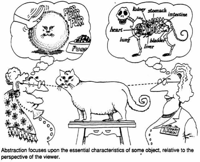 the cat as a metaphor in object
