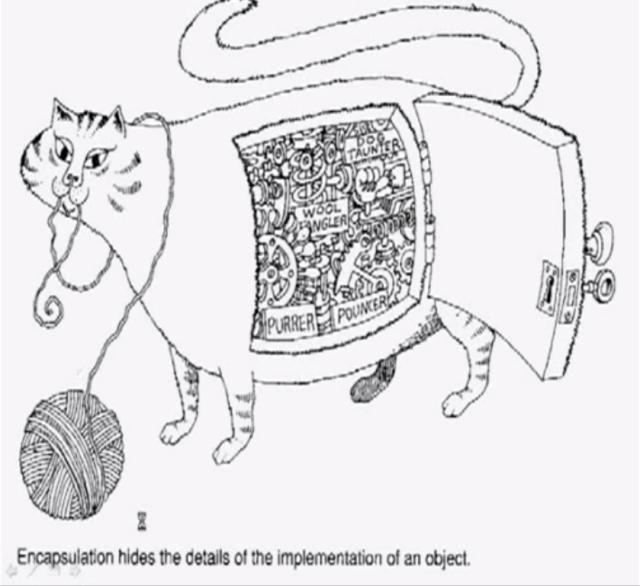 cat-encapsulation